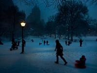 Central Park Sledding : New York City : USA